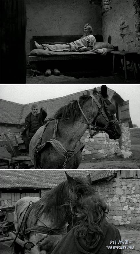 Туринская лошадь (2011)