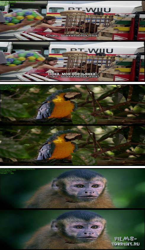 Амазония 3D