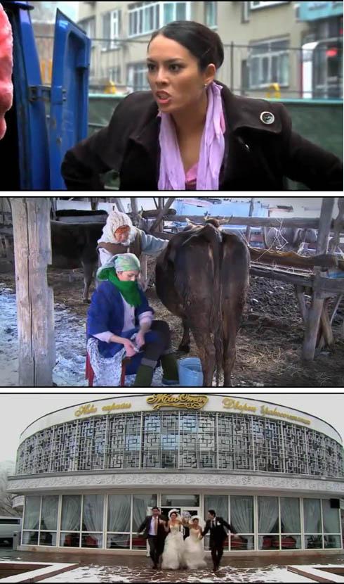 Молоко Сметана Творог (2013)