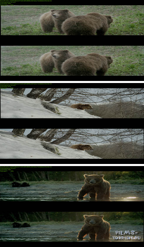 Земля медведей 3D (2013)