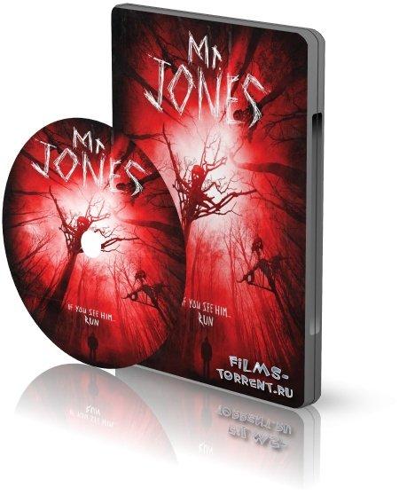 Мистер Джонс (2013)