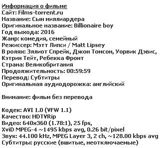 Сын миллиардера (2016)