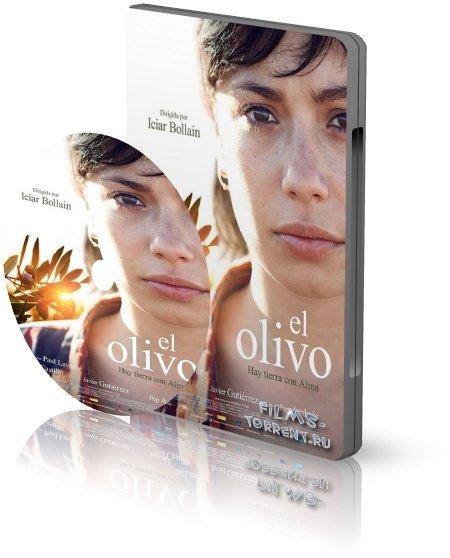 Олива (2016)