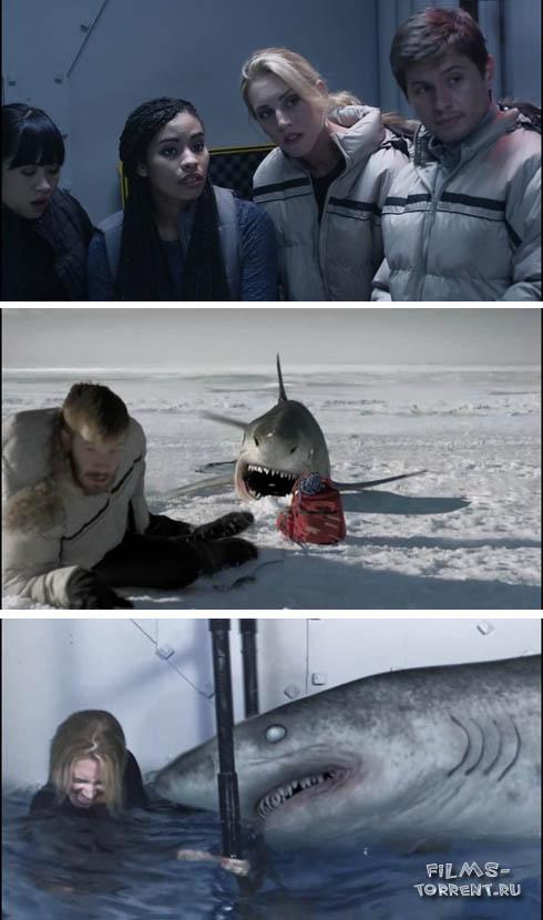 Ледяные акулы (2016)