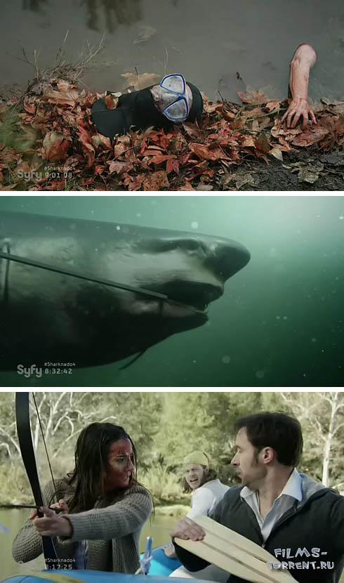Акульи плотины (2016)