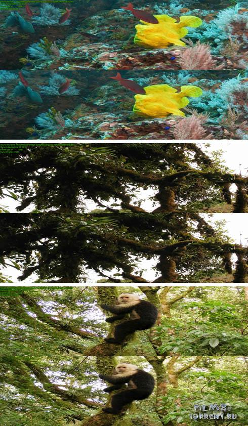 Всемирное природное наследие 3D (2012)
