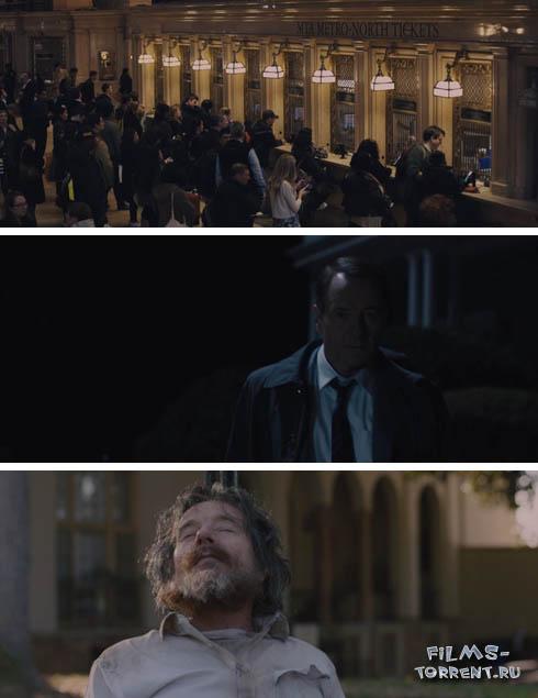 Во всем виноват енот (2016)