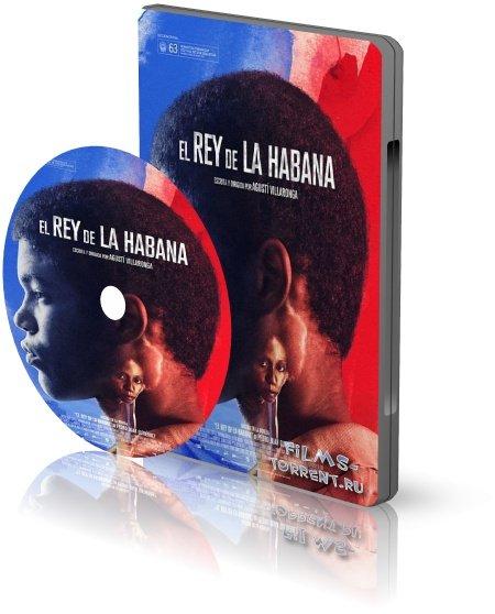 Король Гаваны (2015)