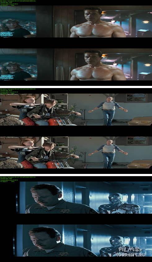Терминатор 2: Судный день 3D (1991)