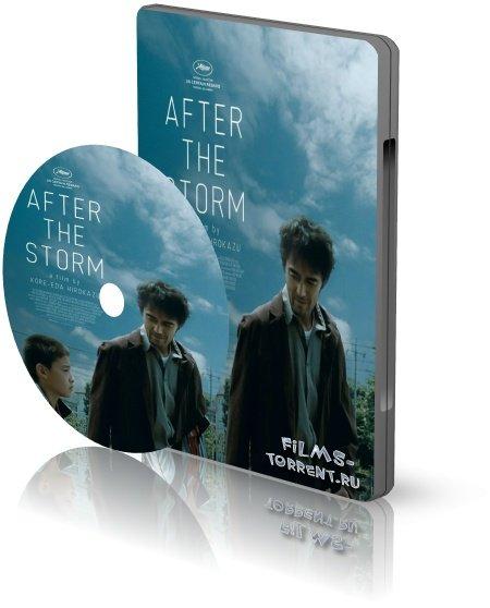 После бури (2016)
