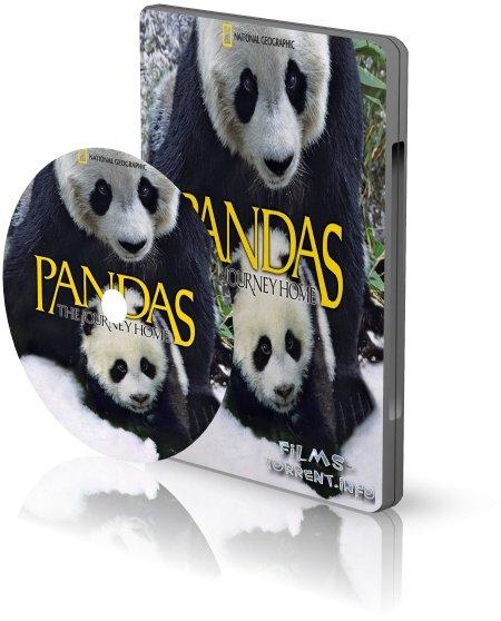 Панды: Путешествие домой 3D (2014)