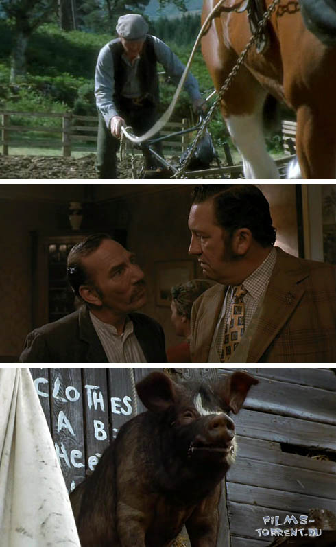 Скотный Двор (1999)