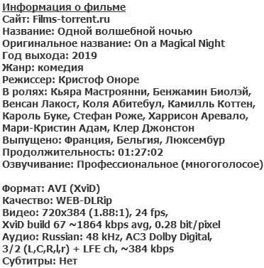 Одной волшебной ночью (2019)