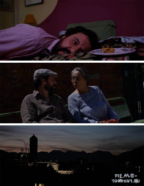 Луна над Турином (2013)