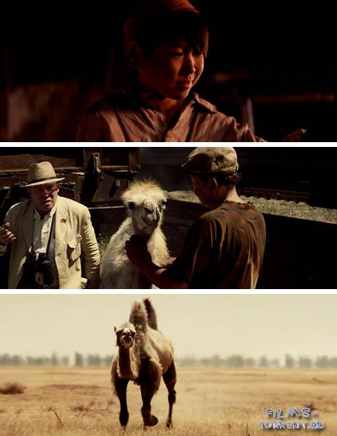 Небесный верблюд (2015)