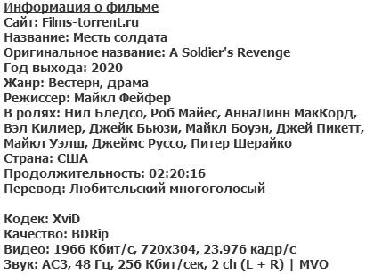 Месть солдата (2020)