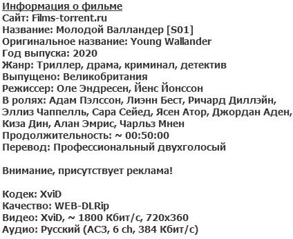 Молодой Валландер (2020)