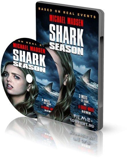 Сезон акул (2020)