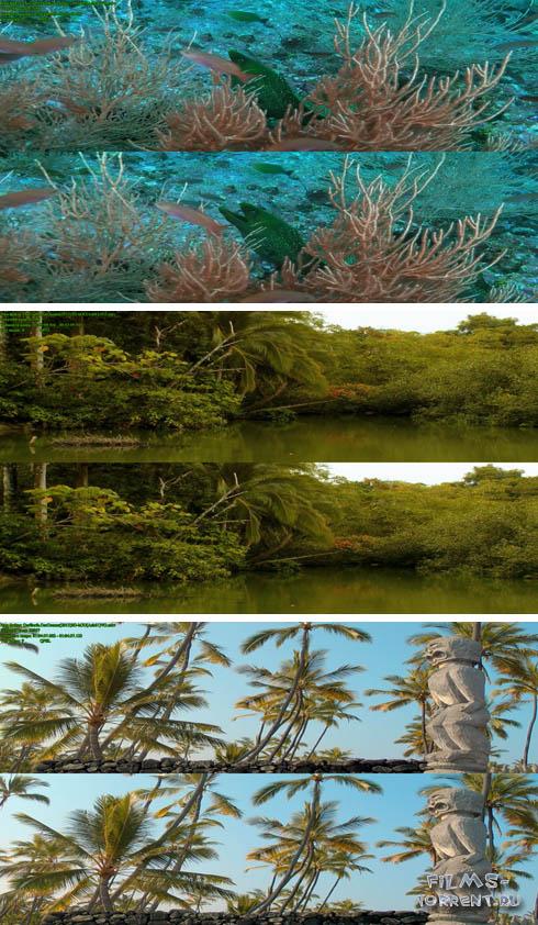 Наша Земля: Наши океаны 3D (2013)
