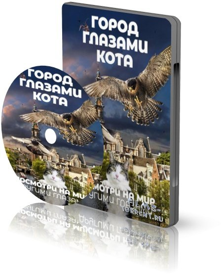 Город глазами кота (2018)