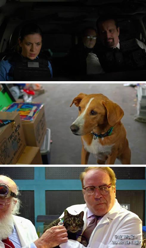 Пёс под прикрытием (2020)